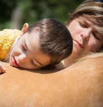La médiation animale. Thérapies et représentations